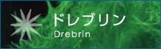 ドレブリン